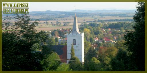 Wzgórza Kiełczyńskie, czyli co kryje się wśród drzew?