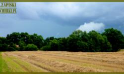 Zaklety kun – czeski trial i niespodziewana burza