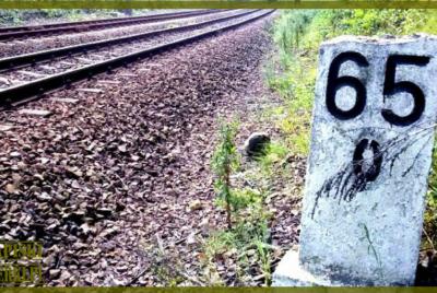 Złoty pociąg – znamy prawdziwe miejsce ukrycia [MAPA + OPISY]