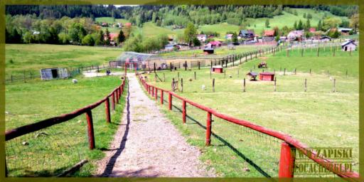 ZOO Farma w Łącznej – ZOO Mieroszów